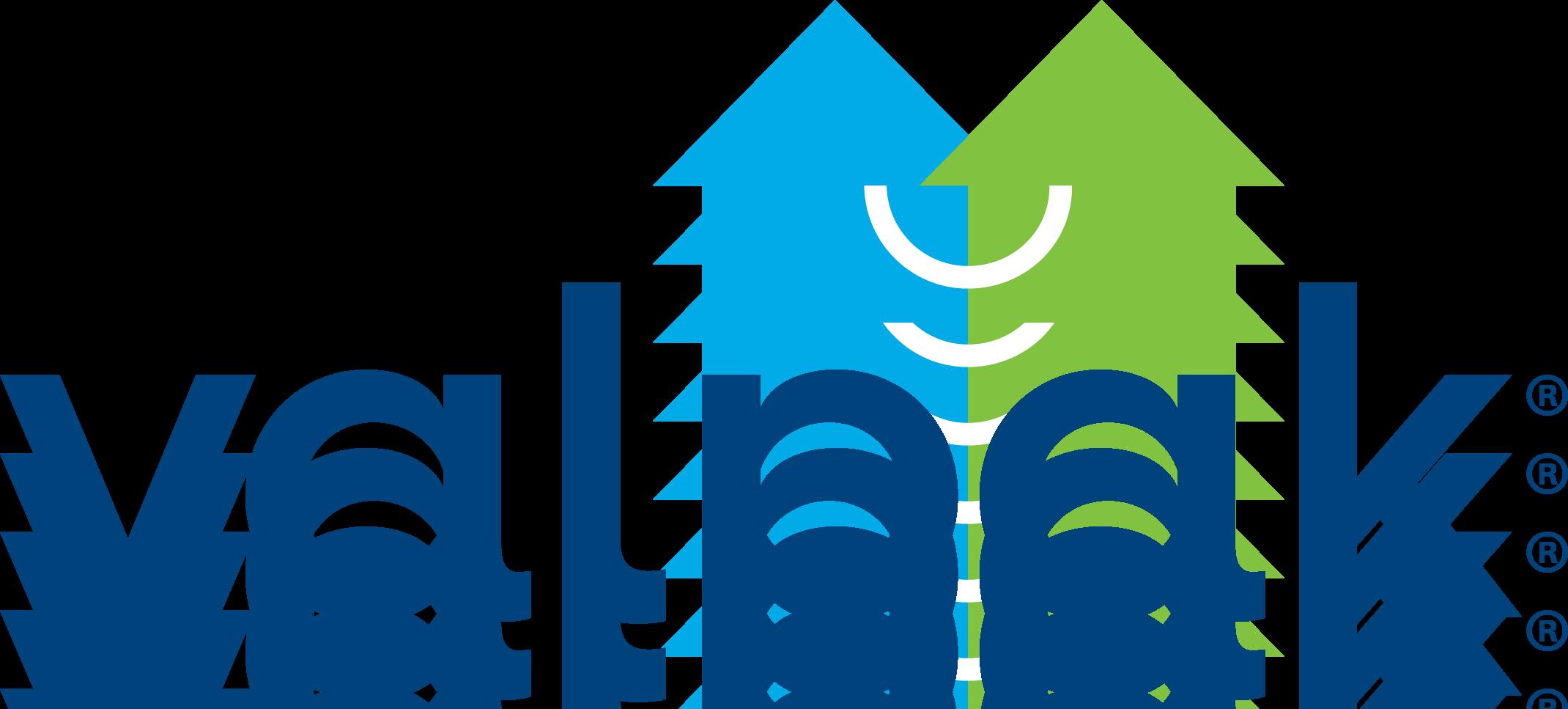 Valpak Logo